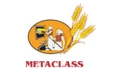 Metaclass